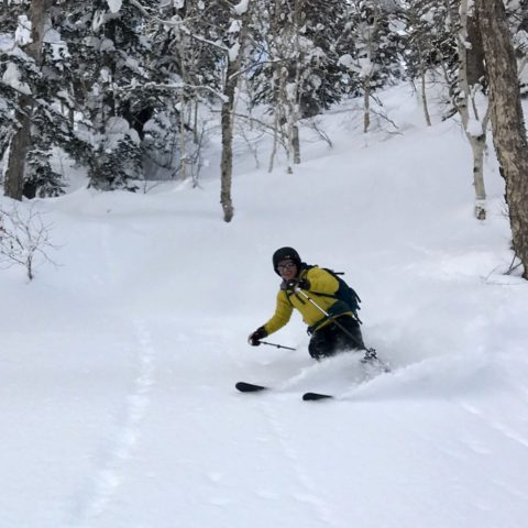 Skiing powder in Japan with Synnott Mountain Guides.